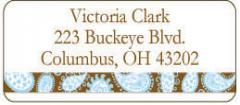 Blue and Brown Paisley Stripe Address Label